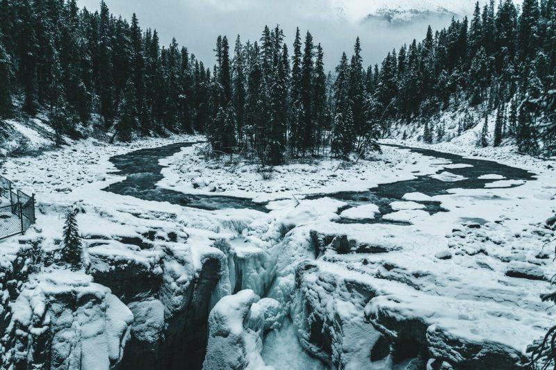 Overleven in de winter